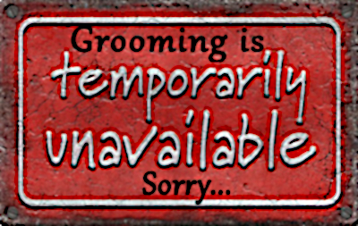 Grooming Unavailable